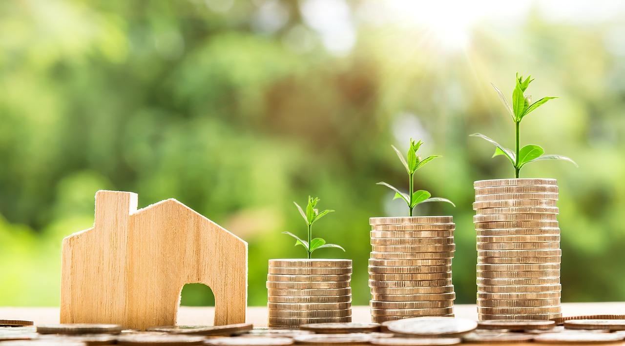 Zwangsversteigerungen von Immobilien