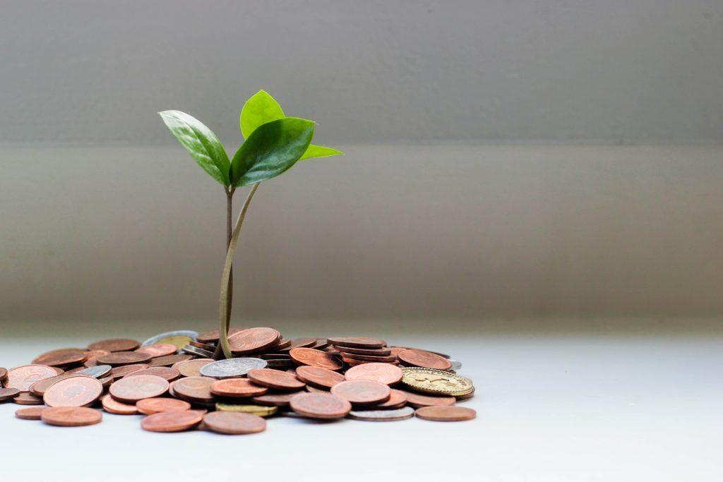 Vermögensverwaltung mit grünem Gewissen